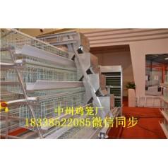 供应层叠式肉鸡笼三层四层阶梯式肉鸡笼设备