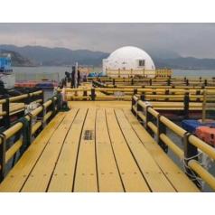 高效节能海洋养殖踏板设备