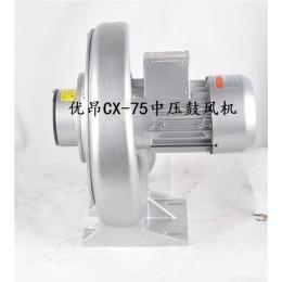 谷物的烘干和选送常用CX-125中压透浦式鼓风机