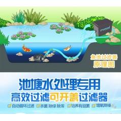 深圳奥力克私家鱼池过滤设计改造