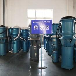 防洪防汛潜水轴流泵厂家