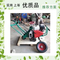 手推的稳定性强汽油起草机 26公分宽起草机