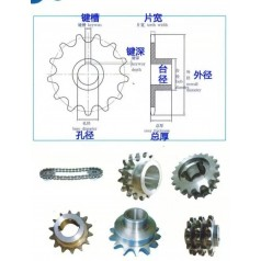 不锈钢齿轮定制大量非标链轮