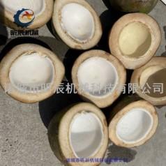 切椰子机椰子劈半机椰子收汁机